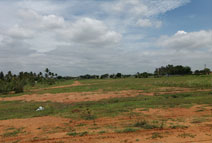 22 Acres of fertile Land suitable for Villas in Sarjapur