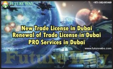 New Trade License
