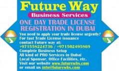 Professional License Dubai