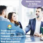 Trade License In Dubai & PRO Services