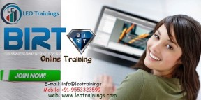 birt report online training