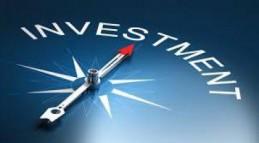 I'm seeking an investment partner
