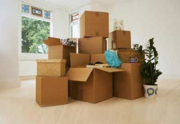 Movers Packing and Shifting Services In Al Ain
