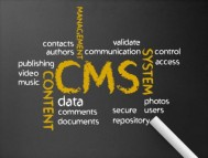 Looking for a Customized CMS Web Development, New York