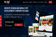 Professional Web Design and Development Company in Dubai